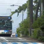 静岡市駿河区の大浜プールへのバスなどアクセス方法や料金は?